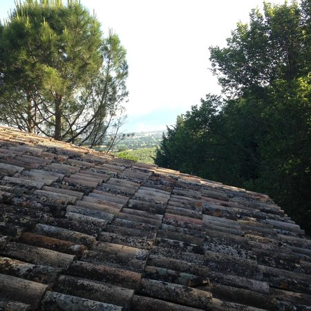 """Agritourism """"The Vineyard"""" : Panorama dalla mansarda"""