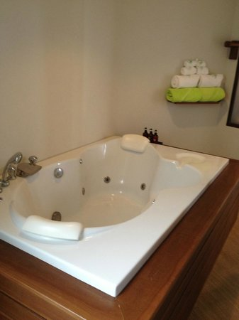 Betterview Bed Breakfast & Bungalow : Bathtub