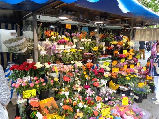 Marienplatz: tripudio di fiori