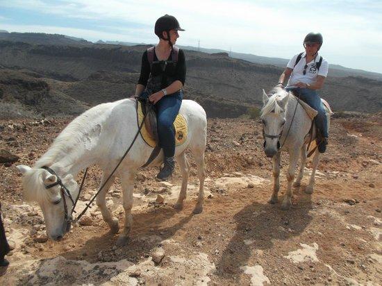 El Salobre Horse Riding: we