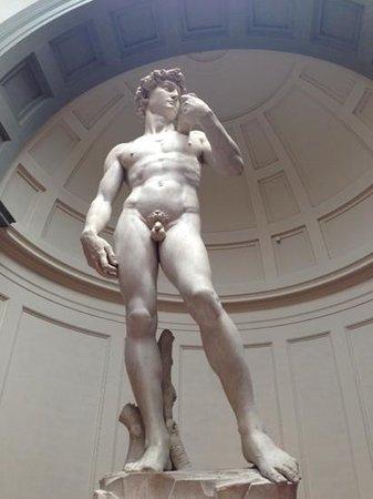 Galería de la Academia: David in all his naked glory!