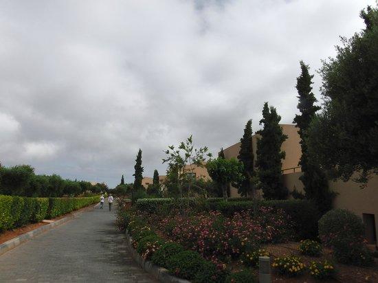 Village Heights Golf Resort : Дорожки