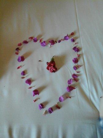 Medina Belisaire & Thalasso: bed art