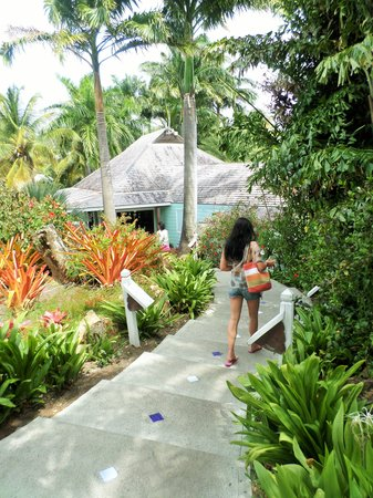 Cocobay Resort : cottage #12 plung pool