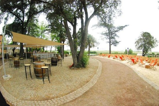 Restaurant Trip Advisor Toulouse