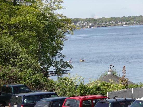Maine Island Kayak Company : Peaks Island
