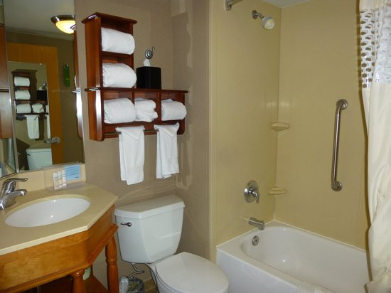 Hampton Inn Ann Arbor - North: salle de bain