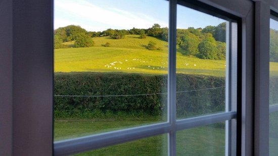 The Paddocks B&B : What a view to wake up to!!