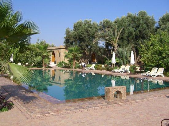 Hotel Dar Zitoune : piscine de l'hotel