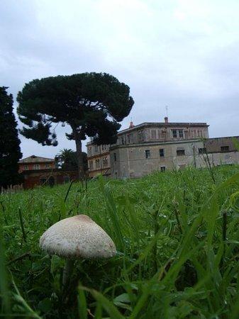 Istituto Salesiano San Tarcisio, Catacombe di San Callisto