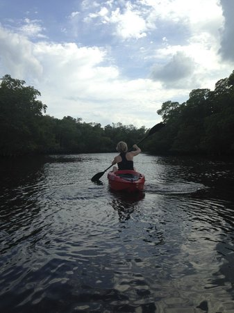 Bunche Beach: kayaking