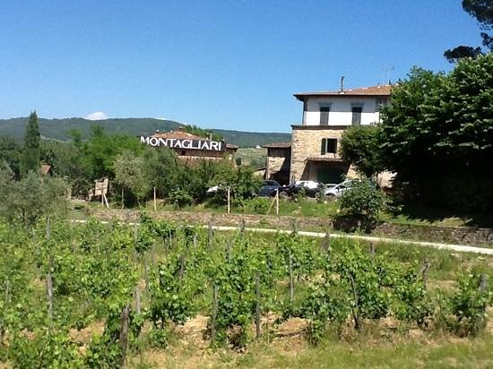 Tuscany Car Tours: lunch