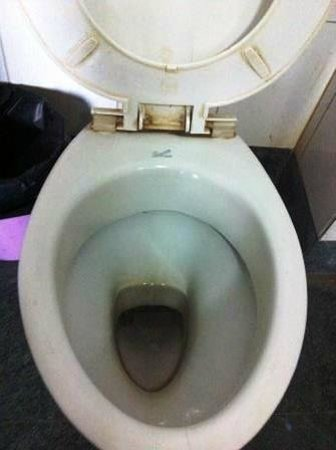Hotel Vaibhav: WC
