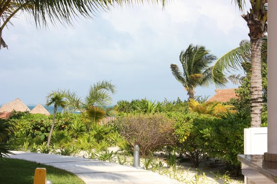 Excellence Playa Mujeres: Grounds