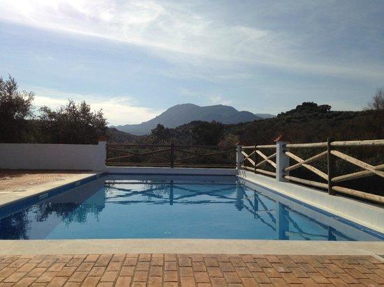 The pool at Casa Olea