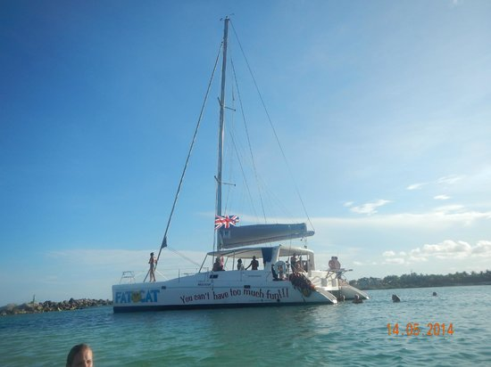 FatCat Ocean Adventures: The catamaran boat