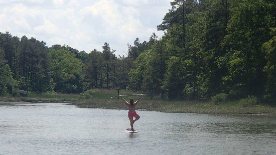 Rudee Inlet Stand Up Paddle: Tree Pose out on a SUP with Randy from SUP Rudee Inlet