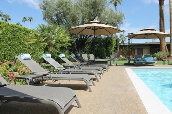 Desert Riviera Hotel : By the pool