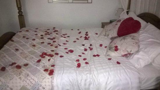 Cables B&B : Rose petals