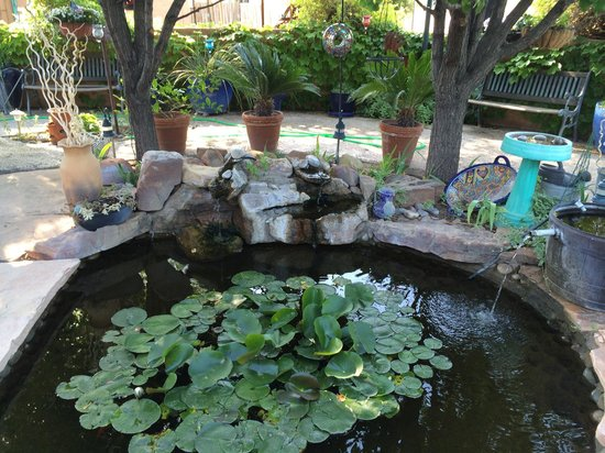 Cinnamon Morning Bed And Breakfast: Pond in the garden, with water fountain. Very relaxing.