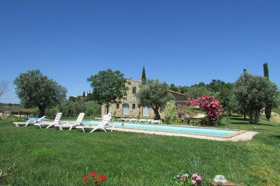 Le Chiuse Azienda Agrituristica: la piscina vista dalla nostra camera