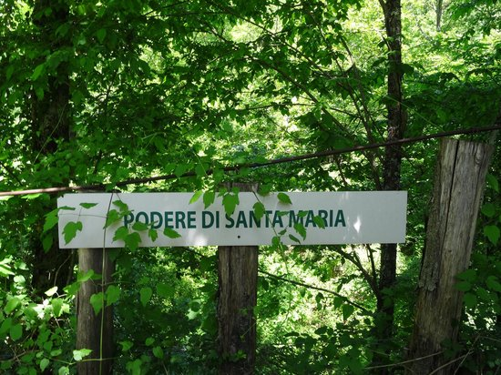Podere di Santa Maria: From the road this is the sign showing where to go