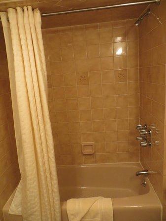 Salisbury Hotel: Shower