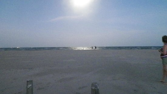A Laughing Horse Lodge: The beach is in walking distance