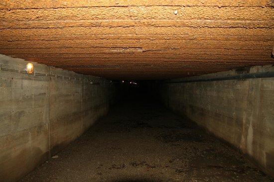 Tunel Schronowy