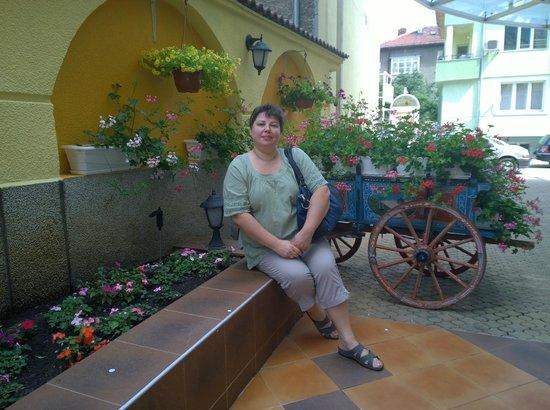 Bistra & Galina Hotel: Restaurant terrace entrance