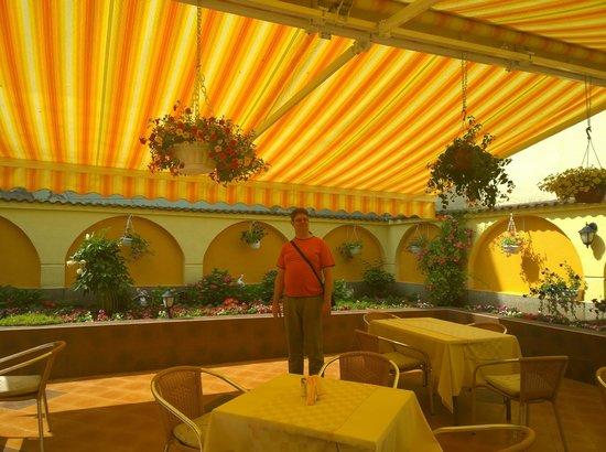 Bistra & Galina Hotel: Restaurant terrace