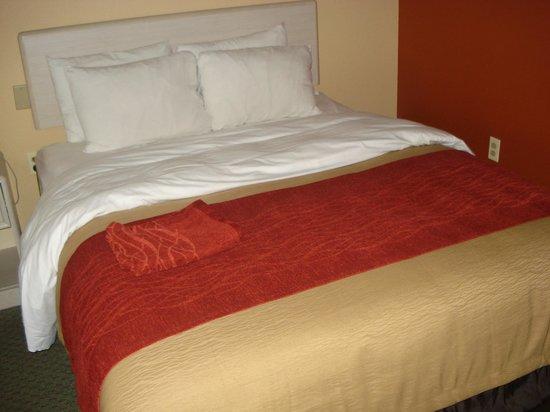 Clarion Inn  & Suites Miami Airport: Bed