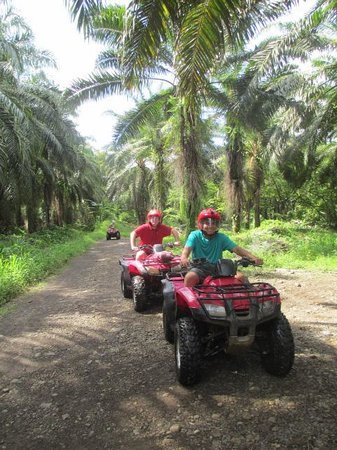 Go Tours Costa Rica - Day Tours: ATV, Zip Lining, &