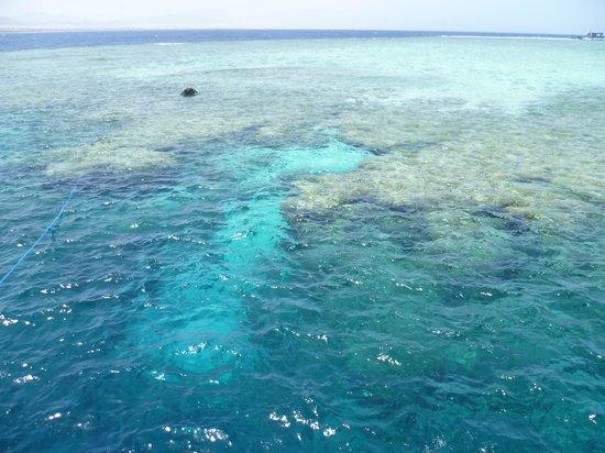 Cleopatra Luxury Resort Sharm El Sheikh: boat trip .... went snorkelling here