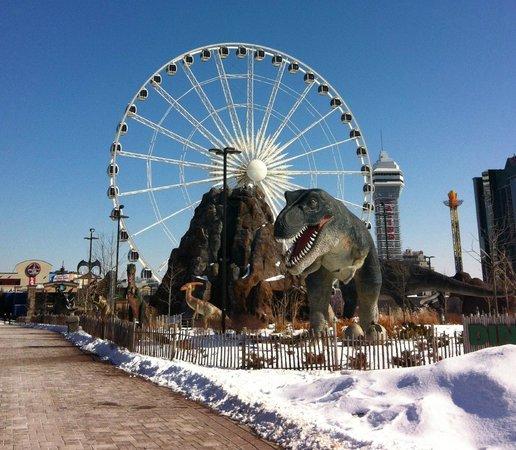 Niagara SkyWheel: Ferris Wheel Niagara Falls, Canada