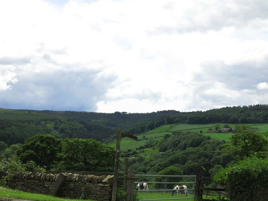 The Shady Oak Restaurant: View out over the Goyt Valley from the pub grounds