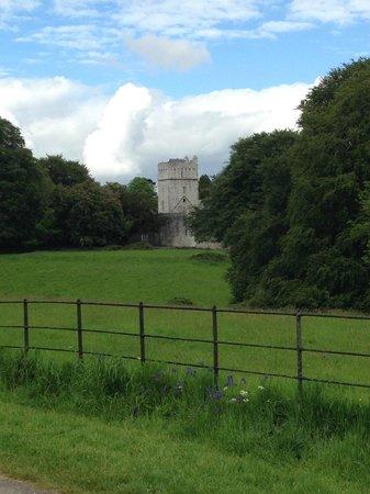 Killarney National Park: view along the way