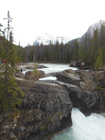Natural Bridge: Beautiful!