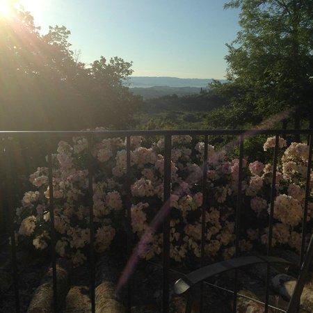 Podere San Luigi: Uitzicht rechts balkon