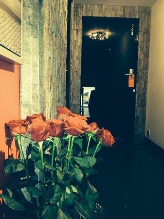 Komorowski Luxury Guest Rooms: corridors to rooms