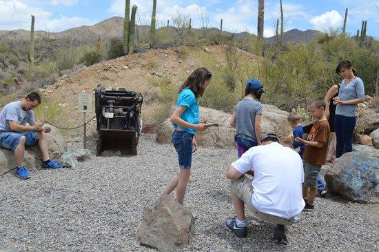 Arizona-Sonora Desert Museum: Digging for treasures