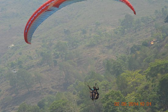 Skybird Adventures