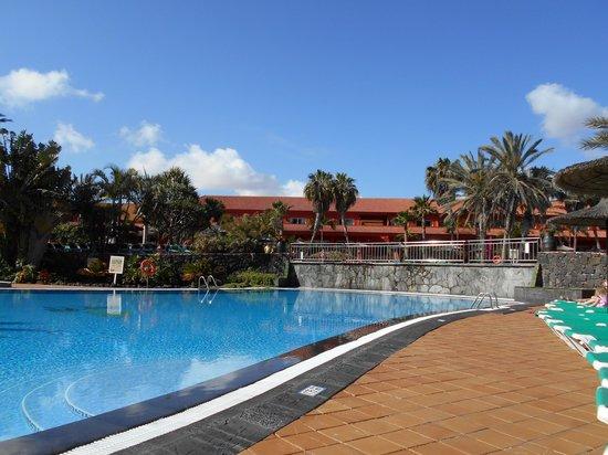 Oasis Village: small pool