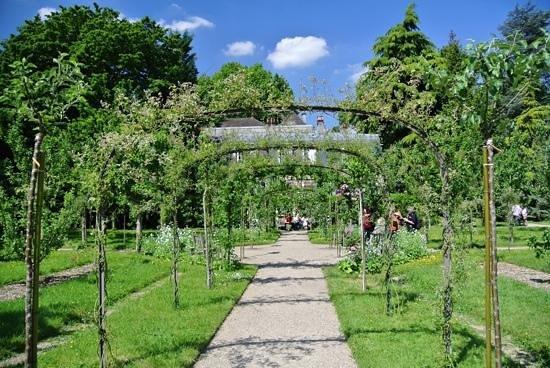 Albert Kahn Musee et Jardins : Gardens of Albert Kahn