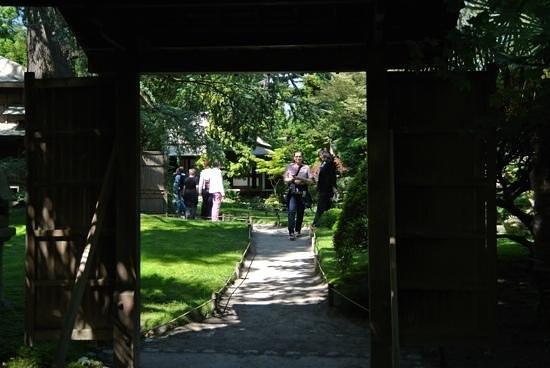 Albert Kahn Musee et Jardins : a garden view