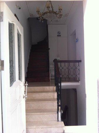 Istanbul Garden Suite : View from front door