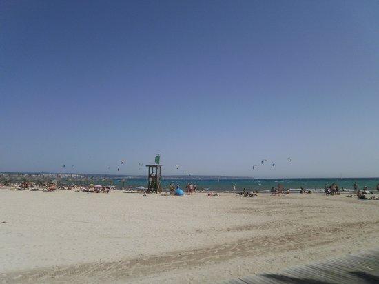 Hotel Amic Gala: plage de Can Pastilla devant l'hôtel