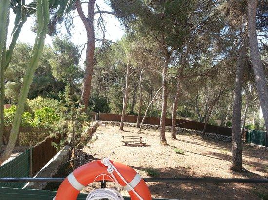 Condemar: woodland walk start