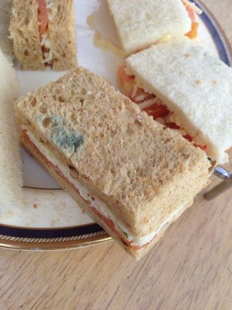 Wincanton, UK: The mouldy sandwiches we were served after paying £90 EACH for half day in the spa.