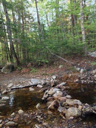 Lye Brook Falls: try walking across the creek on these rocks